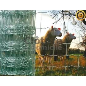 Grillage noué pour animaux - Rouleau 50m